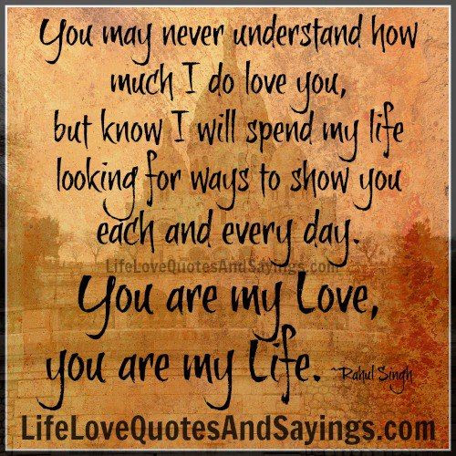Quotes About Never Understanding 80 Quotes