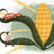 It's Time to Rethink America's Corn System: Scientific American
