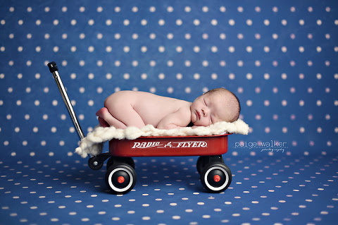 Baby Macdonald Fort Worth Dallas Baby Photography Paige Walker