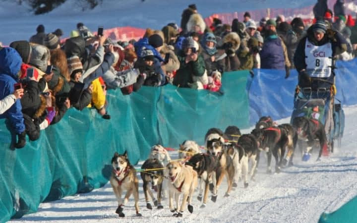 Race rookie Ryan Anderson of Minnesota drives his team onto the Chena River during the restart of the Iditarod Trail Sled Dog Race.