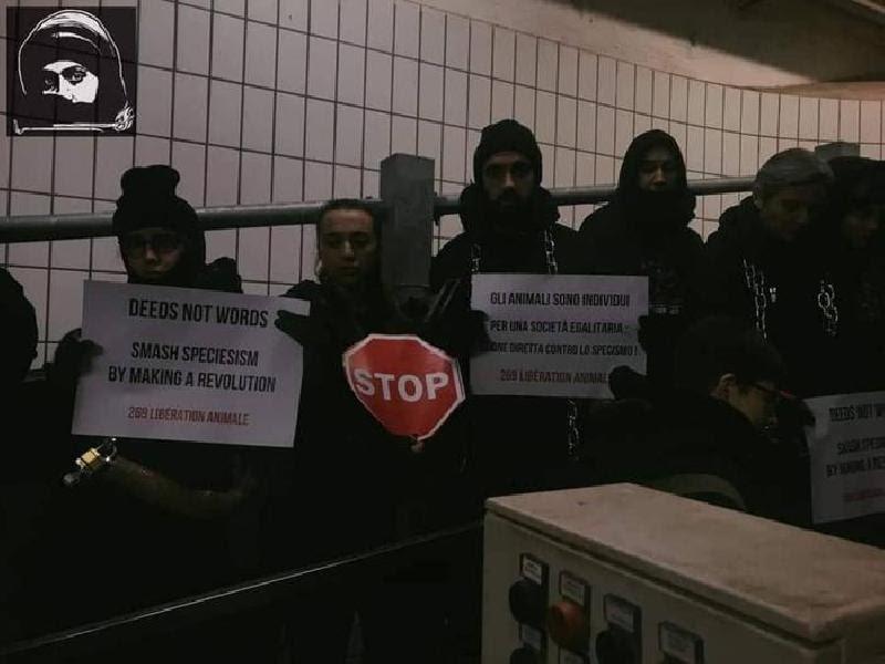 Risultati immagini per torino 28 gennaio occupazione del mattatoio vedi