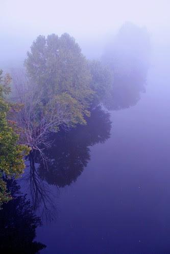 A Misty River Mood