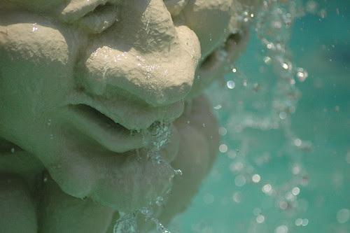 Fountain Face detail