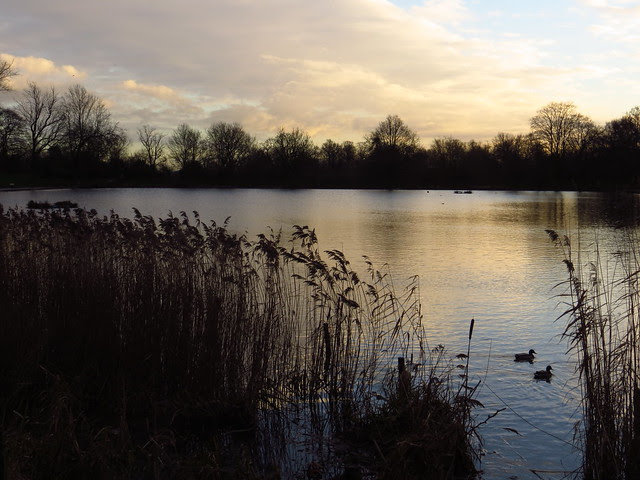 The Model Boating Pond