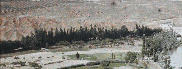 Camino arbolado que marcaba el antiguo margen del río antes de desecar la Isla de Antolinez. Fotografía autocroma de Auguste Léon en 1914 (detalle)