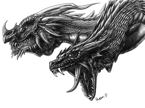 awesome dragon drawings top design magazine web