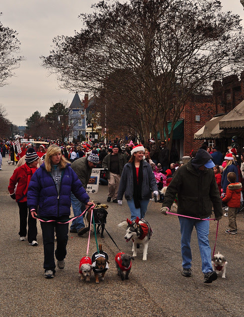 Dogs on Main St