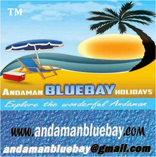 Andaman Honeymoon Package | Best Honeymoon Tour Packages To Andaman