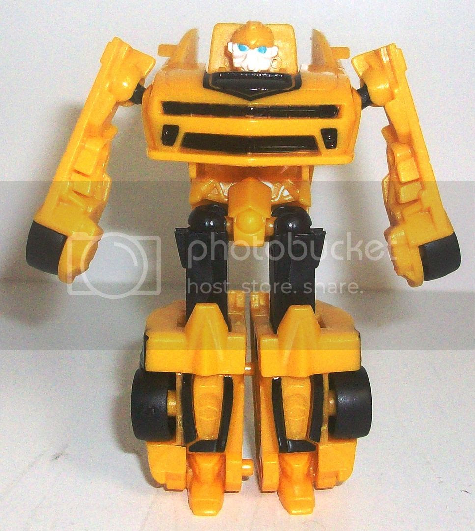 Bumblebee and Strafe photo 100_6829_zps6c3718cb.jpg