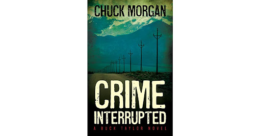 Vernita Naylor's review of Crime Interrupted