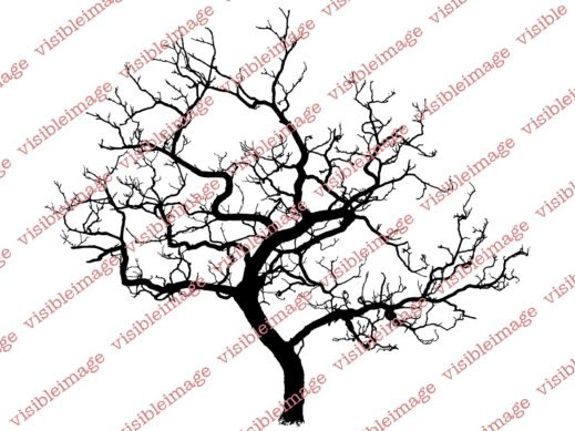 0 Visible Image Winter Tree stamp