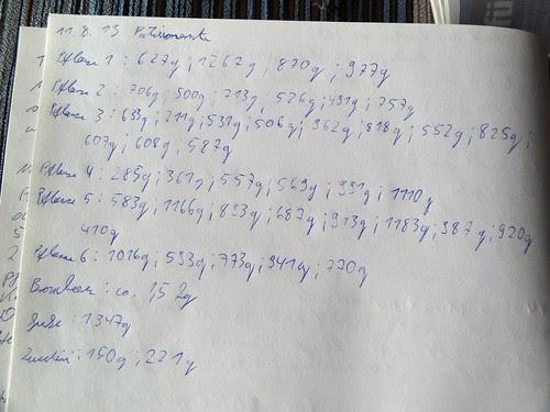 Erntestatistik Küchentagebuch 11.08.2013