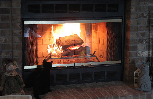 How to Clean Fireplace Glass Doors