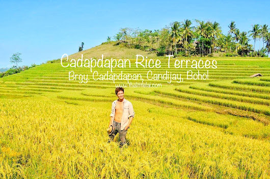 Cadapdapan Rice Terraces: Discovering And Embracing Its Innate Beauty