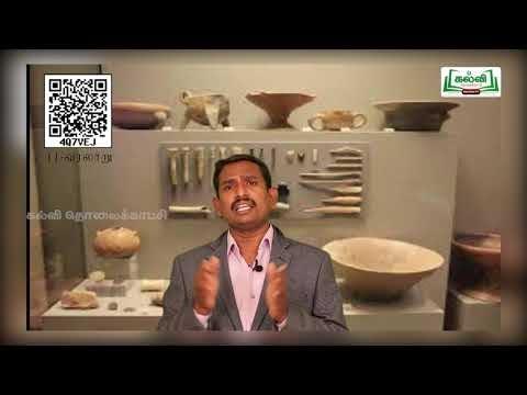 11th History பண்டைய இந்தியா செம்புக்கால, பெருங்கற்கால,  அலகு 2 பகுதி 1 Kalvi TV