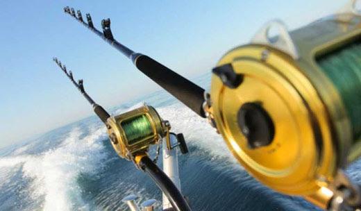 saltwater rods reels
