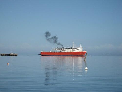 ferry Savu Savu