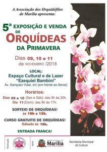 orquídeas2