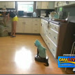 WATCH: 'Shark Cat' loves riding Roomba