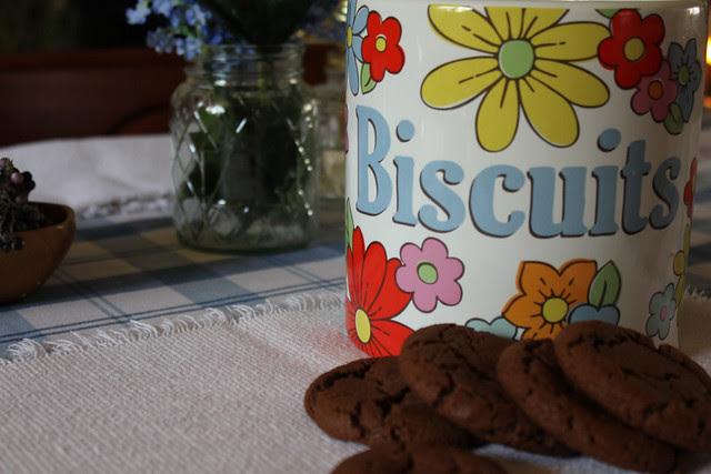 Cocoa, PB & Nutella Cookies