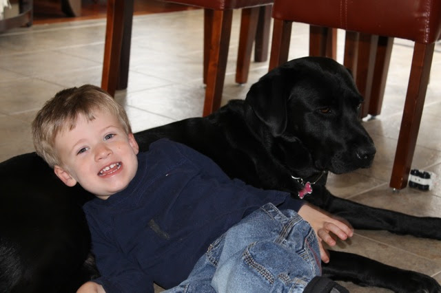 A boy and his dog1