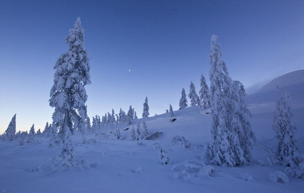 Conheça Oimekon, o povoado mais frio do planeta 23