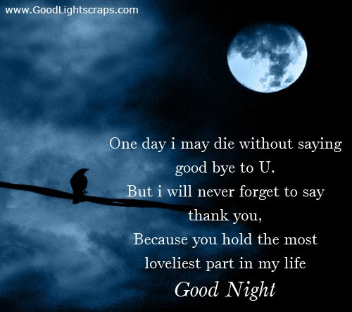 One Day I May Die Iwthout Saying Good Bye To Ubut I Will Never