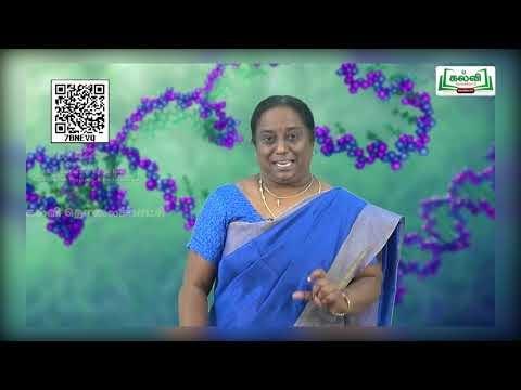 11th Bio Chemistry உயிர் வேதியியலின் மற்றும் செல் உயிரியலின் மற்றும் செல் உயிரியலின் அடிப்படைக் கொள்கைகள் அலகு 2 Kalvi TV