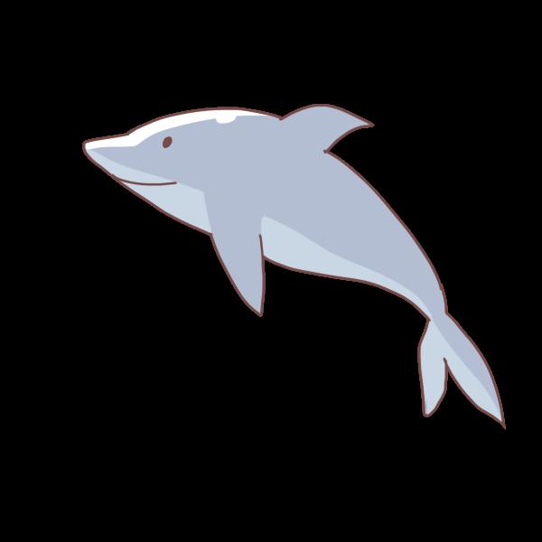 イルカのイラスト かわいいフリー素材が無料のイラストレイン