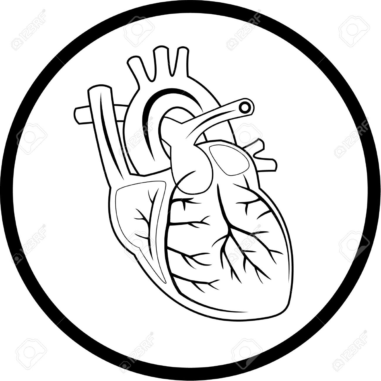 human heart clipart black and white 37