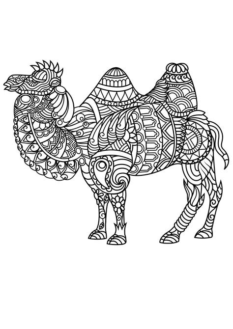 animal coloring pages  adult coloring coloring books
