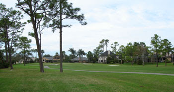 Spruce Creek Golf Homes