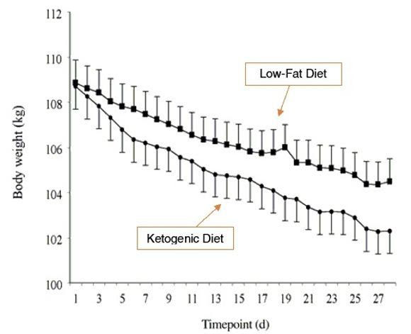 Body weight by Timepoint - Low fat diet versus ketogenic diet