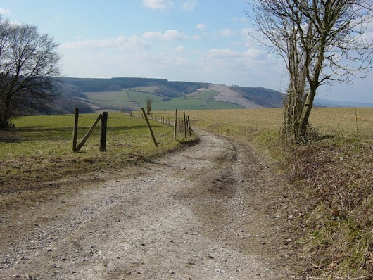 Top 5 Walks in West Sussex - Inside the Outdoors | Mountain Warehouse Community