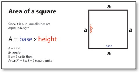 How To Find The Area Of A Square Assignment Point