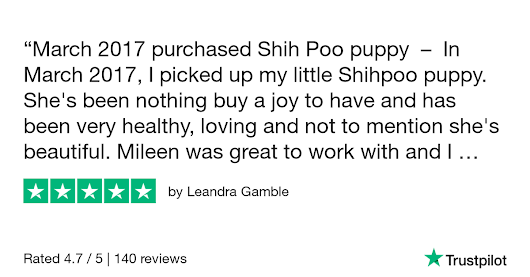 Leandra Gamble gave Fancypoo4u 5 stars. Check out the full review...