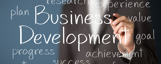 What Are The Elements Of Business Development?