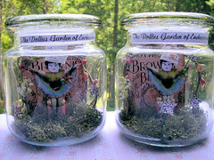 The Dollies Garden Jar Fairies