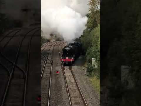 The Flying Scotsman 60103 comes through Devon
