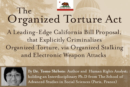 Click here to support Let's criminalize organized torture organized by Freedom For Targeted Individuals