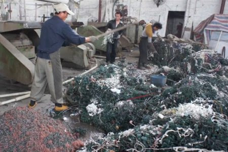 .com/proxy/ - Christmas Light Recycling Christmas Ideas