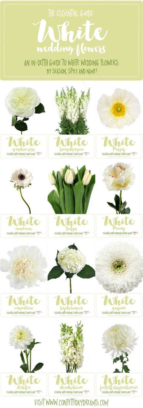 Essential White Wedding Flower Guide: Names, Types   Pics