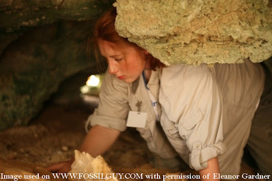 Questions for a Paleontologist: Eleanor Gardner