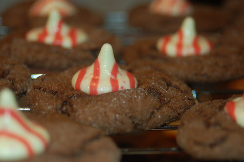 Christmas Vacation: Cookies