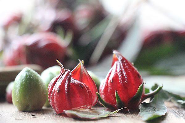 Roselle fruit/calyces
