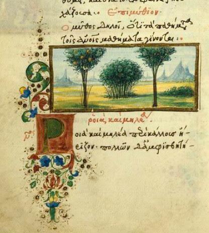 Rubus et Arbores