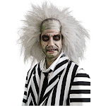 Rubie's Costumes Beetlejuice Adult Men's Halloween Wig, White, One Size