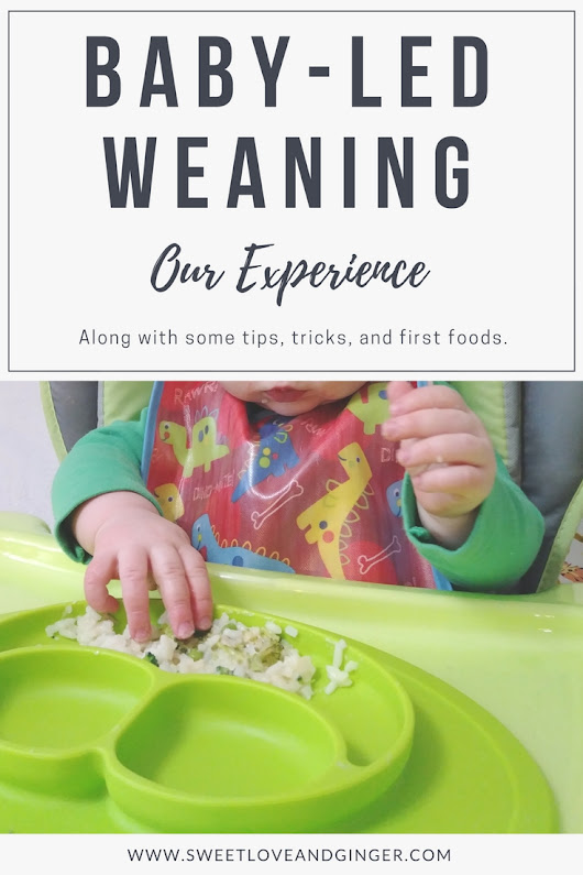 Baby-Led Weaning: Our Experience - Sweet Love and Ginger