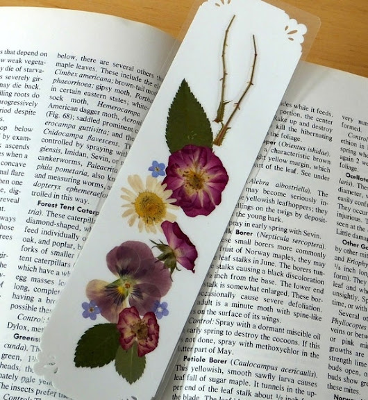 PRESSED FLOWER BOOKMARK Organic Natural Maine by MyHumbleJumble