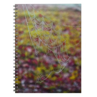 Spider Web of Pearls Spiral Note Books